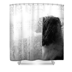 3 30 Shower Curtain