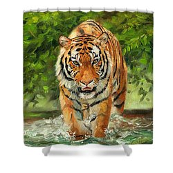 Amur Tiger Painting Shower Curtain
