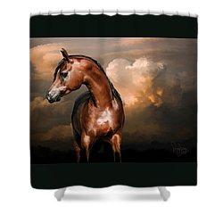 3. Arab Shower Curtain
