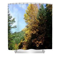 Autumn 2 Shower Curtain by J D Owen