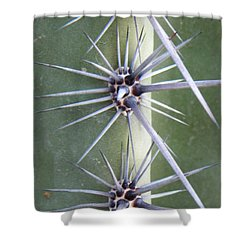 Shower Curtain featuring the photograph Cactus Thorns by Deb Halloran