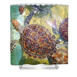 Cayman Turtles Shower Curtain by Carey Chen