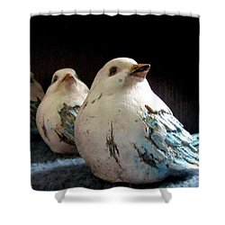 3 Cheeky Chicks 2 Shower Curtain