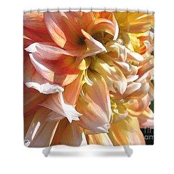 Dahlia Named Peaches-n-cream Shower Curtain by J McCombie