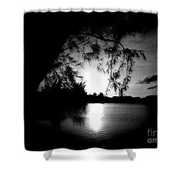 End Of Day Shower Curtain by Amar Sheow