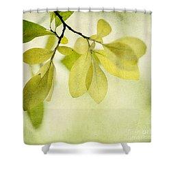 Green Foliage Series Shower Curtain by Priska Wettstein