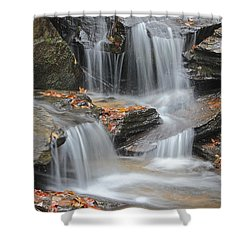 Issaqueena Falls Shower Curtain