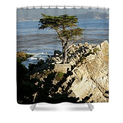 Lone Cypress Shower Curtain by Bev Conover