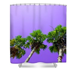 3 Palms Shower Curtain by J Anthony