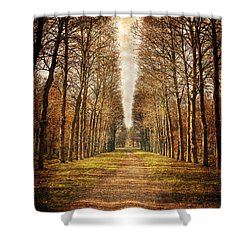 Shower Curtain featuring the photograph Path In The Woods / Versailles by Barry O Carroll