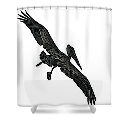 Pelican Selection Shower Curtain