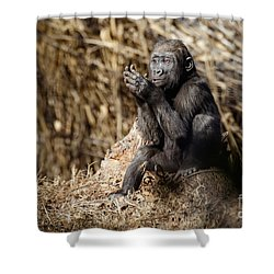 Quiet Juvenile Gorilla Shower Curtain