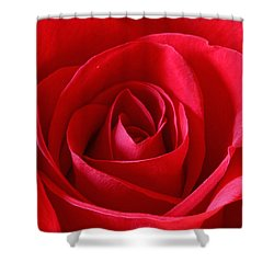 Red Rose Shower Curtain by Peter Lakomy