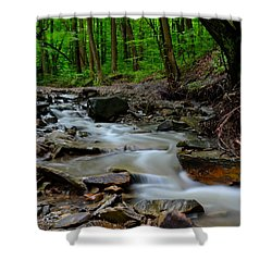 Serenity Shower Curtain by Frozen in Time Fine Art Photography
