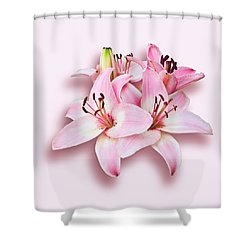 Spray Of Pink Lilies Shower Curtain