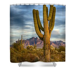 Standing Tall  Shower Curtain by Saija  Lehtonen