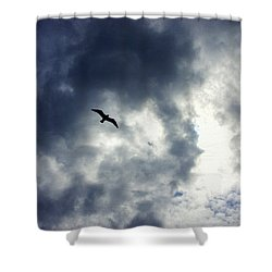 Shower Curtain featuring the photograph Storm Flyer by Marilyn Wilson