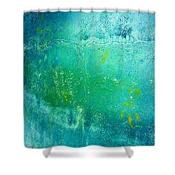 Tao Chi Shower Curtain
