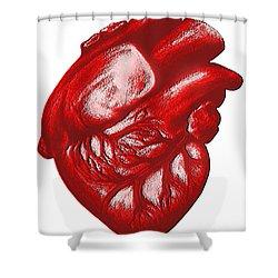 The Human Heart Shower Curtain by Dennis Potokar