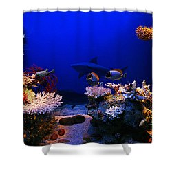 Underwater Scene Shower Curtain