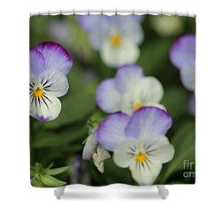 Viola Named Sorbet Lemon Blueberry Swirl Shower Curtain by J McCombie