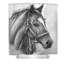 Shower Curtain featuring the drawing Zenyatta by Patrice Torrillo