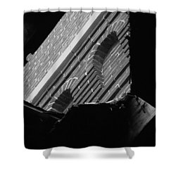 Shower Curtain featuring the photograph 3rd Little Pig Bw by Elizabeth Sullivan