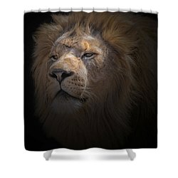 Shower Curtain featuring the photograph African Lion by Peter Lakomy