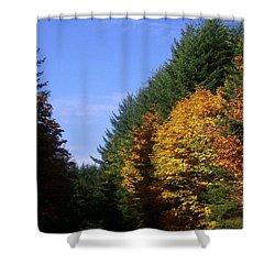 Autumn 9 Shower Curtain by J D Owen