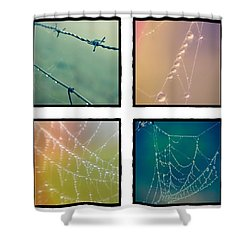 4 Color Web Droplets Shower Curtain