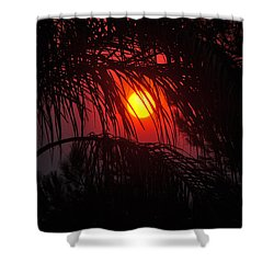 Fire In The Sky Shower Curtain by Jay Milo
