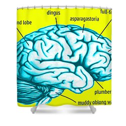 Learn About Your Brain Shower Curtain by Del Gaizo