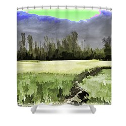 Mustard Fields In Kashmir Shower Curtain