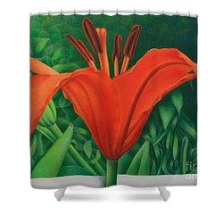 Shower Curtain featuring the painting Orange Lily by Pamela Clements