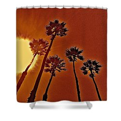 4 Palms N Sun Shower Curtain