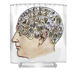 Shower Curtain featuring the painting Phrenology, 19th Century by Granger