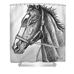 Rachel Alexandra Shower Curtain by Patrice Torrillo