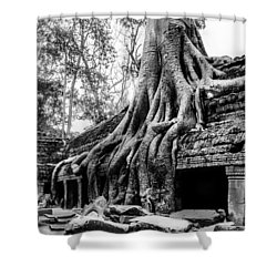 Ta Prohm Ruin Shower Curtain
