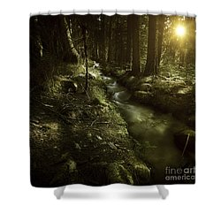 Small Stream In A Forest At Sunset Shower Curtain by Evgeny Kuklev