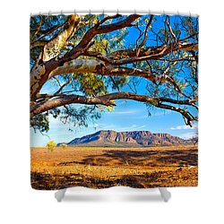 Wilpena Pound Shower Curtain by Bill  Robinson