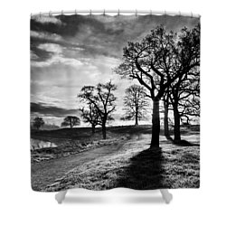 Shower Curtain featuring the photograph Winter Morning Shadows / Maynooth by Barry O Carroll