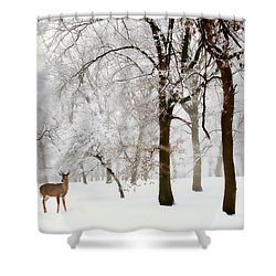 Winter's Breath Shower Curtain by Jessica Jenney