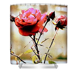 Shower Curtain featuring the photograph 40 Something by Faith Williams