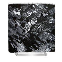 Third Image Shower Curtain