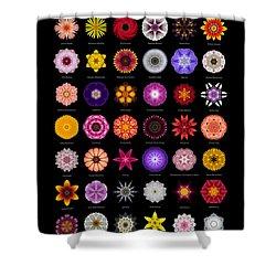 48 Flower Mandalas Shower Curtain by David J Bookbinder