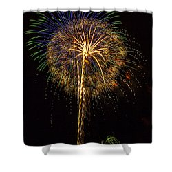 4th July #13 Shower Curtain by Diana Powell