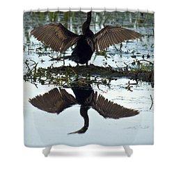 Anhinga Shower Curtain by Mark Newman