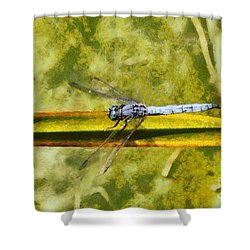 Dragonfly Shower Curtain by George Atsametakis