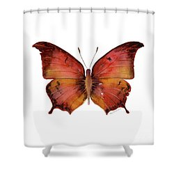 58 Andria Butterfly Shower Curtain