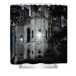 Castle Shower Curtain by Joana Kruse